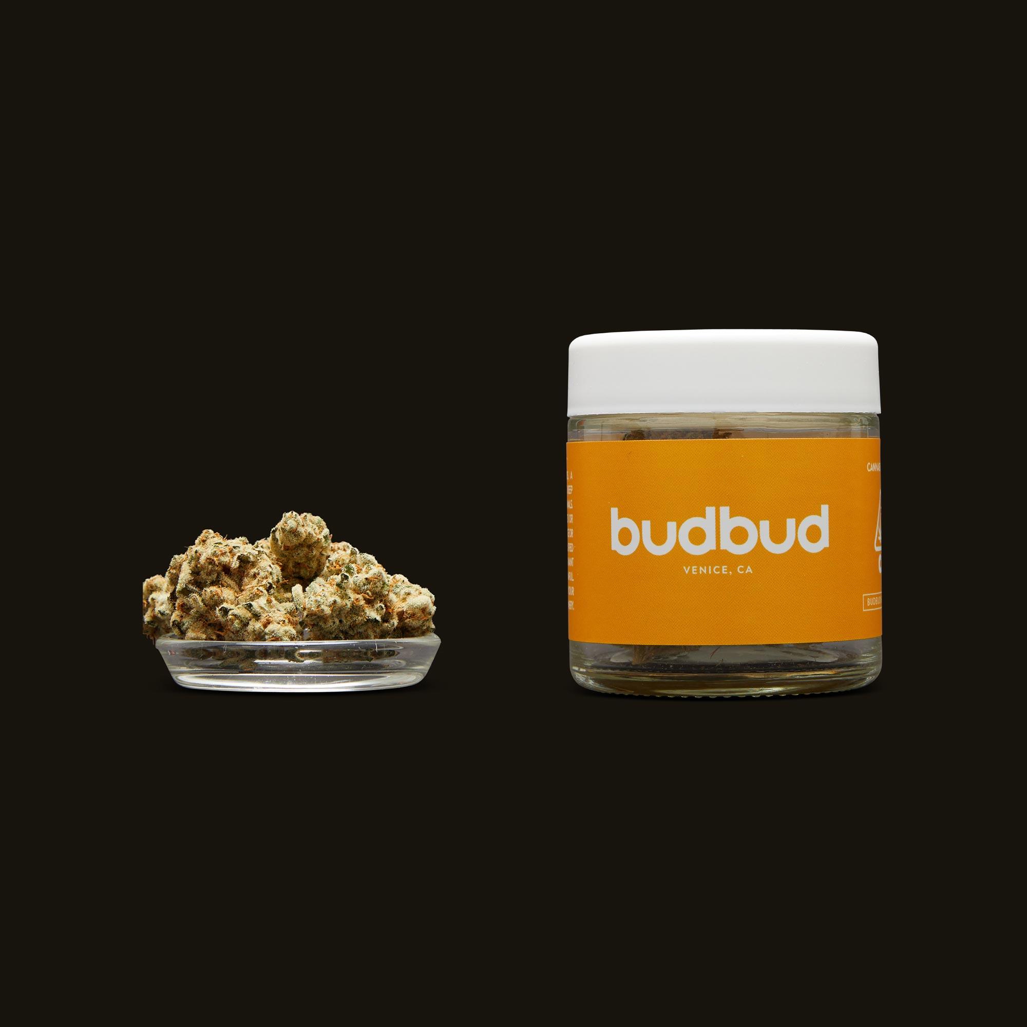 budbud Lamb's Bread Flower with Jar