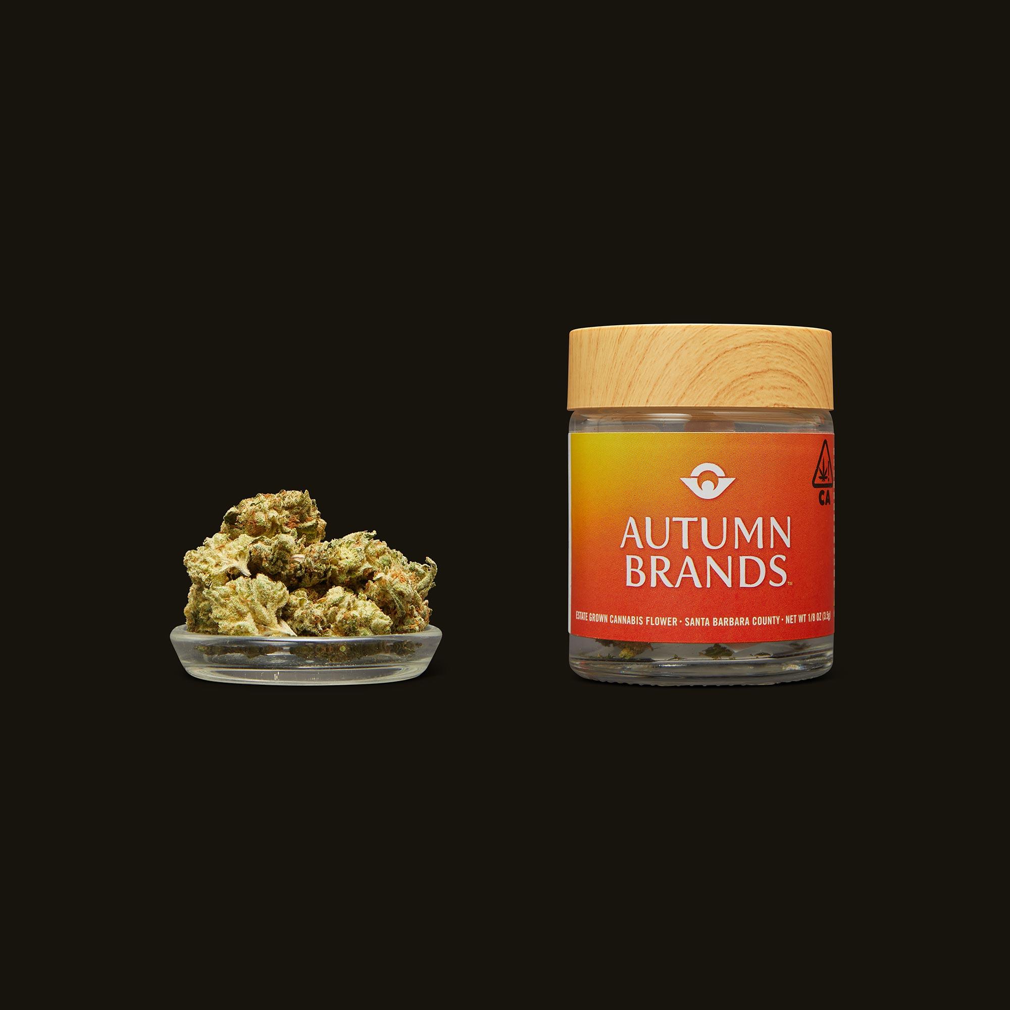 Autumn Brands GG #4